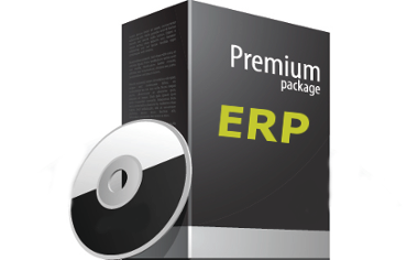 ERP System